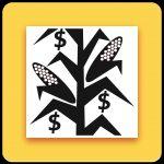 Corn Silage App