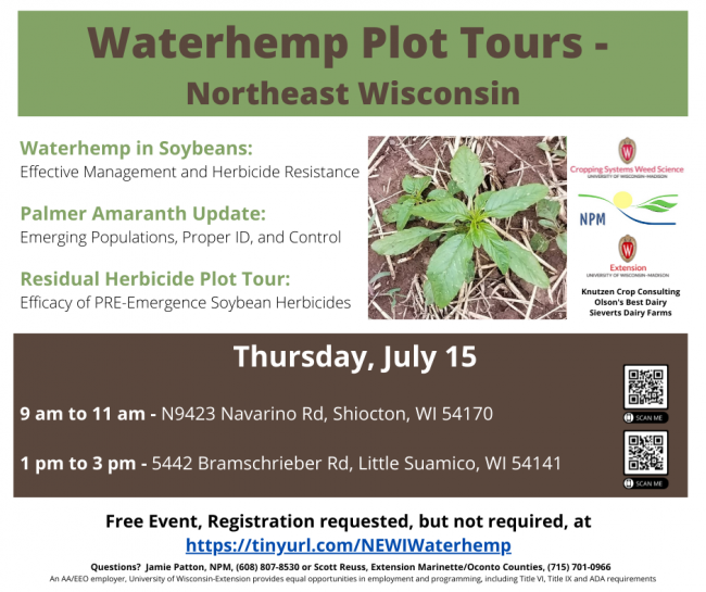 Waterhemp Plot Tours - Northeast Wisconsin. Waterhemp in Soybeans: Effective Management and Herbicide Resistance. Palmer Amaranth Update: Emerging Populations, Proper ID, and Control. Residual Herbicide Plot Tour: Efficacy of PRE-Emergence Soybean Herbicides. Thursday, July 15 9 am to 11 am. N9423 Navarino Rd Shiocton, WI 54170. 1 pm to 3 pm. 5442 Bramschrieber Rd Little Suamico, WI 54141. Free Event, Registration requested, but not required, at https://tinyurl.com/NEWIWaterhemp